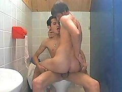 Naughty twinks having a steamy session in lavatory
